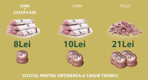 consum-100-kw