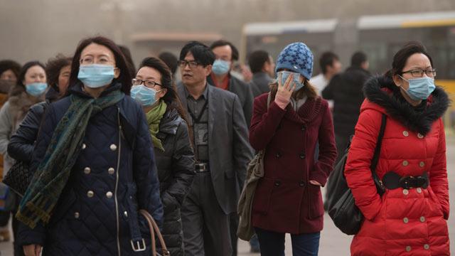 masti poluare