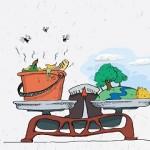 demo reciclare alimente