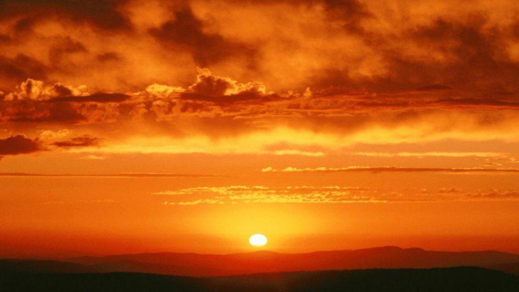 ziua mondiala a Soarelui