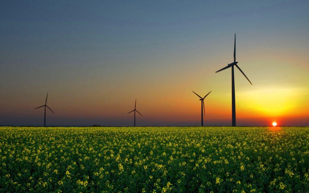 ferma turbine eoliene